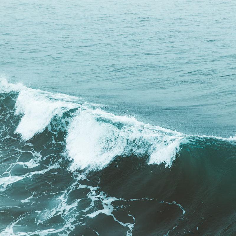 Save the Waves – Ein Beitrag zum Klimaschutz -